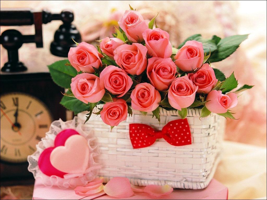 عکس های زیباترین گل های جهان
